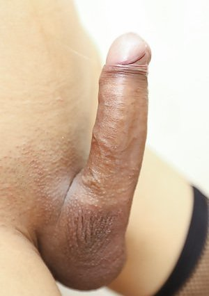 Shaved Ladyboy Pictures