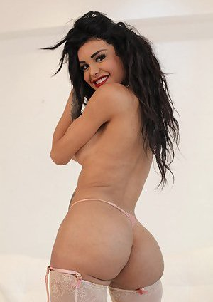 Ladyboy Ass Pictures
